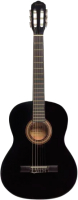 Акустическая гитара Terris TC-390A BK -