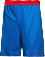Шорты баскетбольные 2K Sport Training / 130063 (S, синий/красный) -
