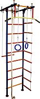 Детский спортивный комплекс Вертикаль Юнга 2.1Д -