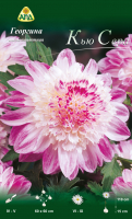 Семена цветов АПД Георгина Кью Сера / A31062 -