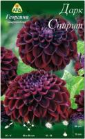 Семена цветов АПД Георгина Дарк Спирит / A30068 -