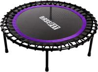 Батут BaseFit TR-501 (101см, фиолетовый) -