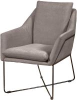 Кресло мягкое Aupi Виго / 4.20.2 (ткань 6) -