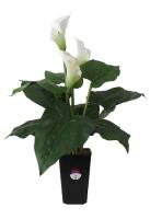 Искусственное растение GrenTrade Калла Магая / 12489 -