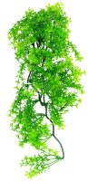Декорация для террариума Lucky Reptile Turtle Plant Ceratopteris / TP-41 -