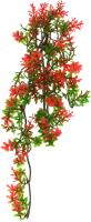 Декорация для террариума Lucky Reptile Turtle Plant Ludwigia / TP-40 -