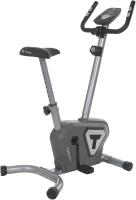 Велотренажер Torneo CFTW9BX48H / A21TTOCM010-91 (серый) -