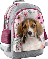 Школьный рюкзак Paso 18-116PS -