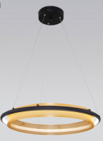 Потолочный светильник Евросвет 90241/1 (черный/золото) -