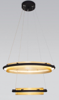 Потолочный светильник Евросвет 90241/2 (черный/золото) -