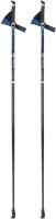 Палки для скандинавской ходьбы STC Extreme (125см, синий) -