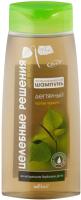 Шампунь для волос Belita Целебные Решения Дегтярный против перхоти (480мл) -