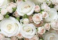 Фотообои листовые Citydecor Букет роз (200x140) -