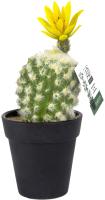 Искусственное растение Ad Trend Кактус / 52143i -