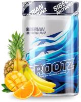 Комплексная пищевая добавка Siberian Nutrogunz Grootz / GRZ001 (250г, экзотик) -