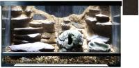 Террариум HydroTerra Jungle (50л, венге) -