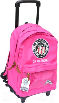 Школьный рюкзак Alpa