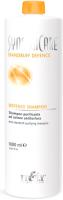 Шампунь для волос Itely Dandruff Defence Shampoo От перхоти (1л) -