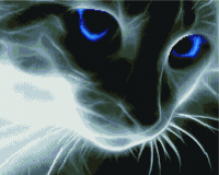 Набор алмазной вышивки PaintBoy Кошачий взгляд / GF533 -
