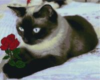 Набор алмазной вышивки PaintBoy Сиамская кошка / GF2737 -