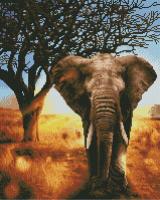 Набор алмазной вышивки PaintBoy Африканский слон / GF4647 -