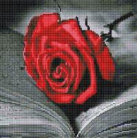 Набор алмазной вышивки PaintBoy Книга и роза / DF407 -