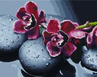 Набор алмазной вышивки PaintBoy Алые орхидеи 2 в 1 / GZS1111 -