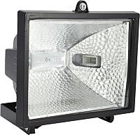 Прожектор ETP RFG-001 500W с блоком защиты (черный) -