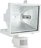 Прожектор ETP RFG-005 500W / 33509 (белый) -