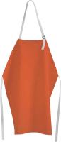 Кухонный фартук JoyArty Классическое полотно / ap-13494 -