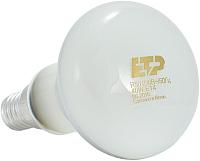 Лампа ETP ЗК R-50 Е14 40W -