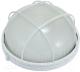 Светильник ЖКХ ETP НПП 6001L / HPL001L 220V-100W (белый) -
