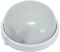 Светильник ETP НПП 6002S / HPL007S 220V-60W (белый) -