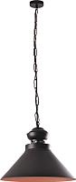 Светильник Vesta Light Loft 17331 (черный) -