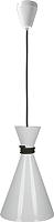 Потолочный светильник Vesta Light 50131 (бело-черный) -