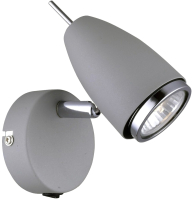 Спот Arte Lamp Regista A1966AP-1GY -