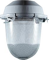 Светильник для подсобных помещений Владасвет 10111 -