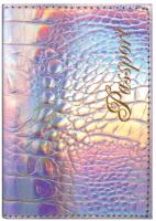 Обложка на паспорт Staff Profit / 237206 (серебристый) -