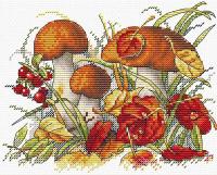 Набор для вышивания М.П.Студия Дары осеннего леса / М-193М -