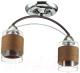Потолочный светильник Lumion Filla 3030/2C -