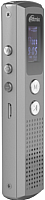 Цифровой диктофон Ritmix RR-120 4Gb (серебристый) -