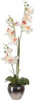 Искусственное растение Вещицы Орхидеи / YW-SUH27 (белый) -