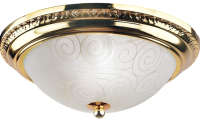 Потолочный светильник Arte Lamp Alta A3013PL-2GO -