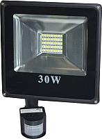 Прожектор ETP 6000K IP65 30W (с датчиком движения) -