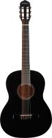 Акустическая гитара DAVINCI DC-70A BK -