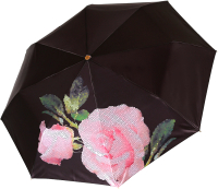 Зонт складной Fabretti L-20110-5 -