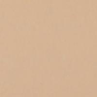 Фон бумажный FST 1038 Pongee / ут-00000694 (2.72x11м) -