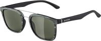 Очки солнцезащитные Alpina Sports Caruma I / A8636471 (зеленый/черный) -