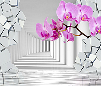 Фотообои листовые Citydecor Орхидея 3D (300x254) -