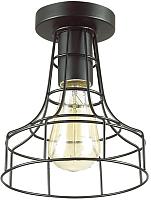 Потолочный светильник Lumion Alfred 3639/1C -